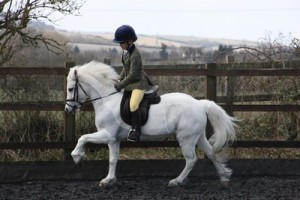 katie turland and dollyCJHL4364 Warehill dressage for Central Horse News small