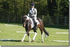 Area 18 CT Jane Langdon Cropthorne  for Central Horse News
