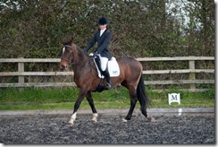Sophie Andrews-PJP_048 for Central Horse News