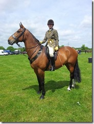 Miss by a Whisker Birmingham Childrens Hospital Show for Central Horse News