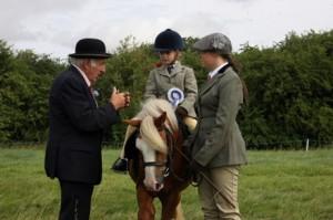 CJHL3308 Leighton Buzzard Standbridge RC Show for Central Horse news