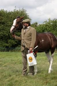 CJHL4023 brian combe castlerise jack for Central Horse News