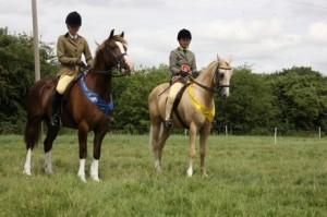 CJHL4398 Leighton Buzzard Standbridge RC Show for Central Horse news