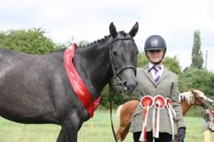 CJHL4595 Leighton Buzzard Standbridge RC Show for Central Horse news