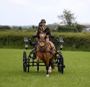 Sue Mart and her young pony take second Image courtesy Bernard Mills for Central Horse News