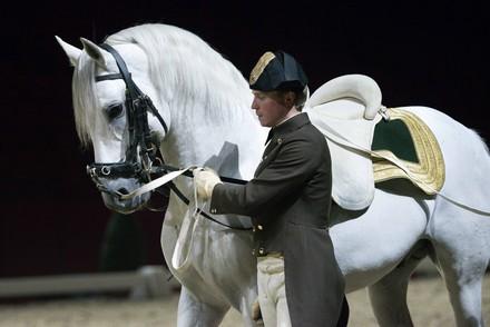 Spanish Riding School on Tour - Birmingham