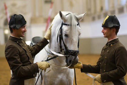 reward_c Spanish Riding School_Michael Rzepa - Kopie