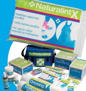 NaturalintX-half-A4-vertical-13