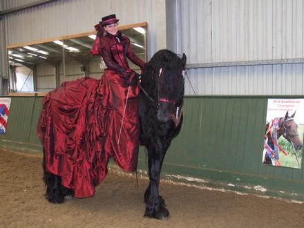 Saddlebreds Show 2014 Heritage_class_Sander