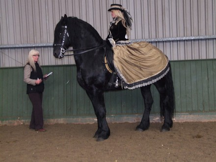 Saddlebreds Show 2014 Julia_catling