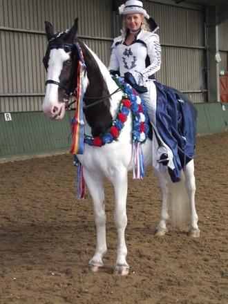 Saddlebreds Show 2014 Saddlebred_Champion