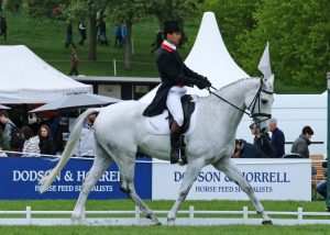 Harry Meade and Away Cruising, Dodson & Horrell Chatsworth Int HT 2017