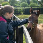 Discover Newmarket Junior Tour Guide winner Paige Peacock meets a foal at The National Stud